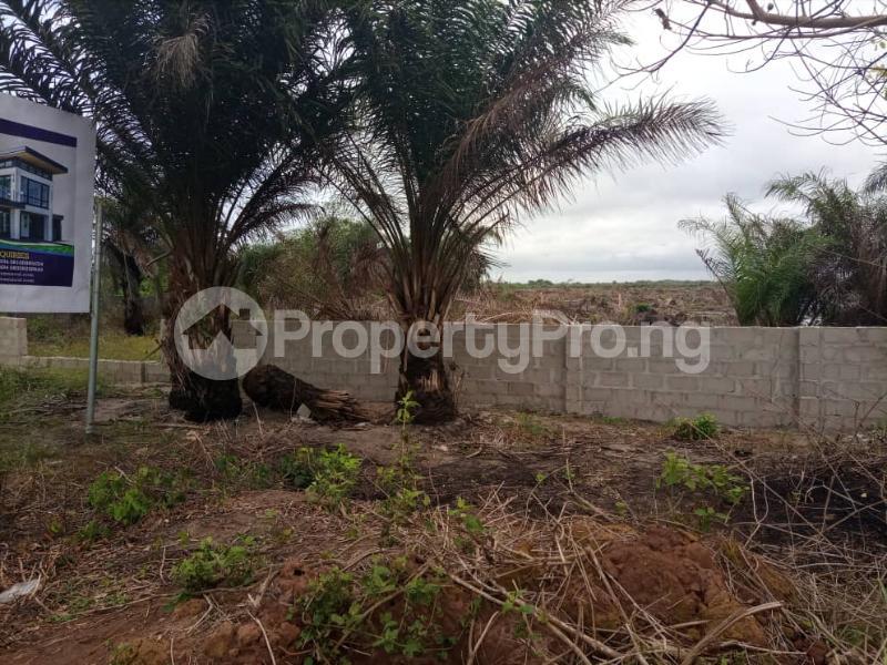 Residential Land for sale Costal Road Eleko Eleko Ibeju-Lekki Lagos - 6