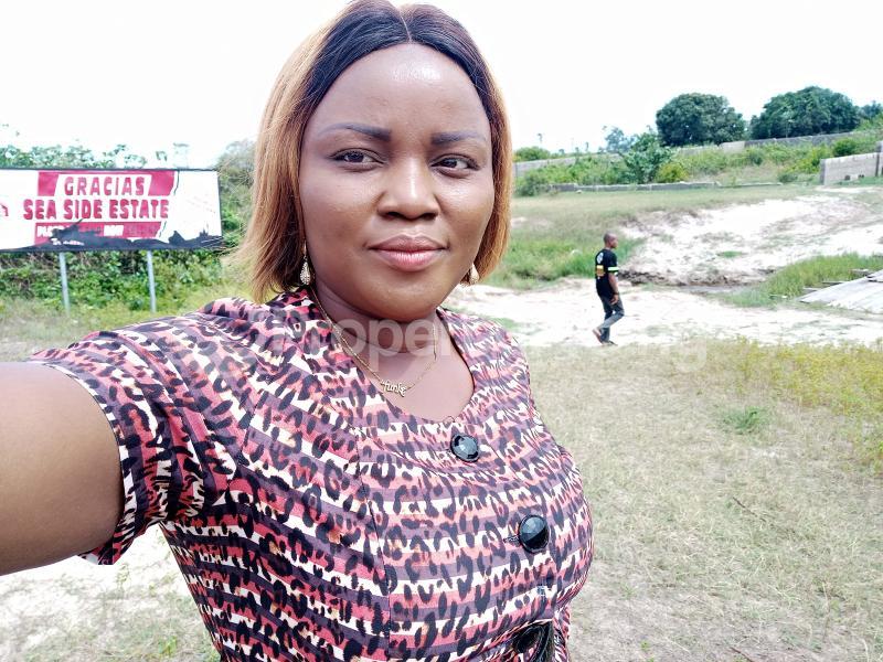 Residential Land for sale Apakin Town Free Trade Zone Ibeju-Lekki Lagos - 2