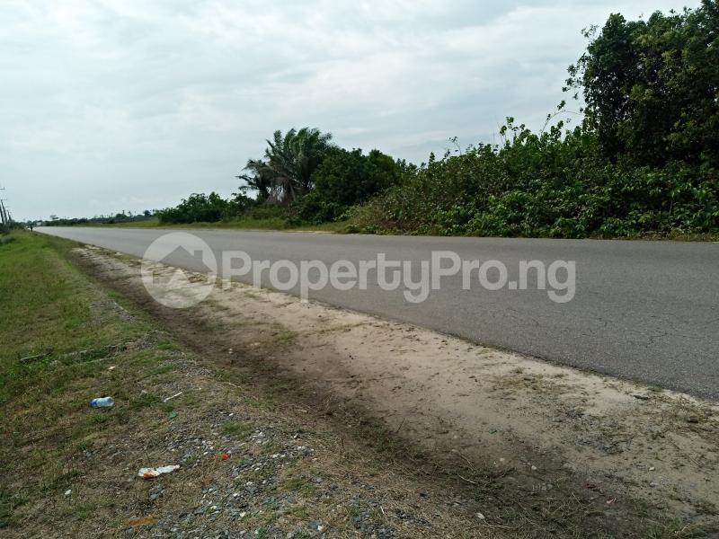 Residential Land for sale Apakin Town Free Trade Zone Ibeju-Lekki Lagos - 3