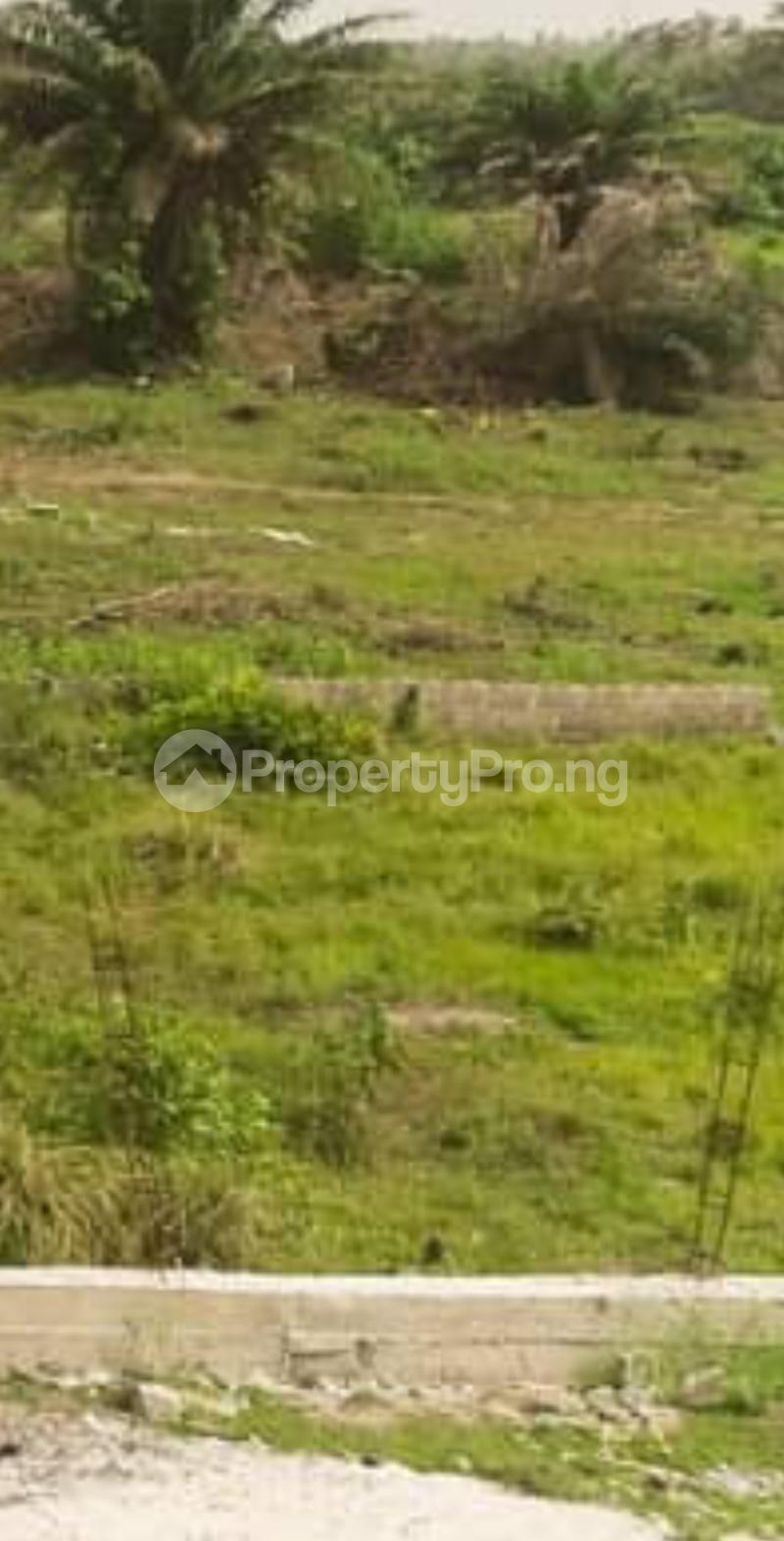 Mixed   Use Land for sale Elegant Estate Behind Amen Estate Eleko Ibeju-Lekki Lagos - 3
