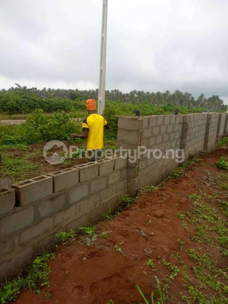 Mixed   Use Land Land for sale Iyana iluogbo, mowo, Badagry,  very close to fashola farm. Age Mowo Badagry Lagos - 2