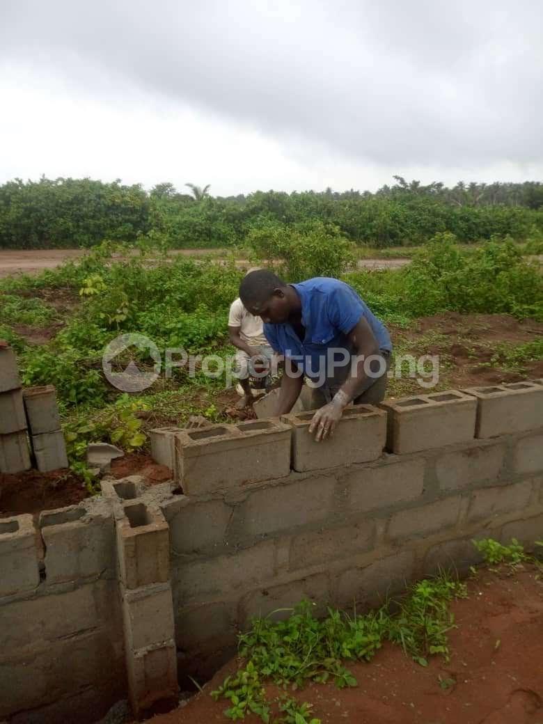 Mixed   Use Land Land for sale Iyana iluogbo, mowo, Badagry,  very close to fashola farm. Age Mowo Badagry Lagos - 3