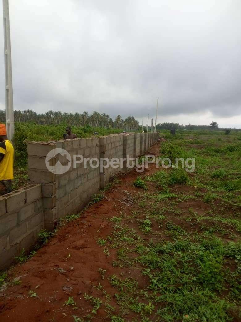 Mixed   Use Land Land for sale Iyana iluogbo, mowo, Badagry,  very close to fashola farm. Age Mowo Badagry Lagos - 1