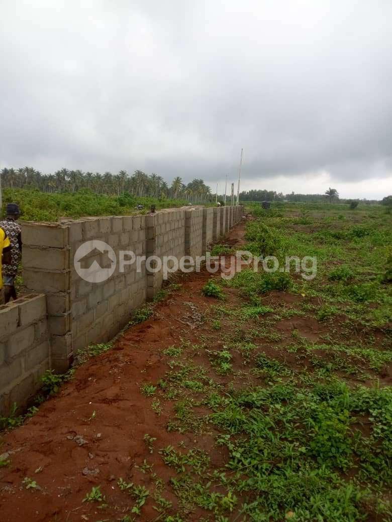 Mixed   Use Land Land for sale Iyana iluogbo, mowo, Badagry,  very close to fashola farm. Age Mowo Badagry Lagos - 0