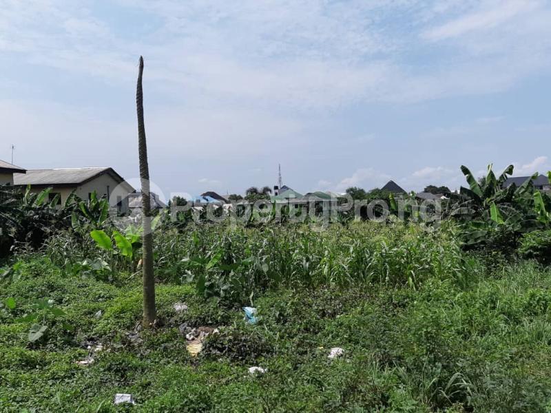 2 bedroom Flat / Apartment for sale Areta Layout Back Of Nnpc Quarters, Port Harcourt Rumuokwurushi Port Harcourt Rivers - 2