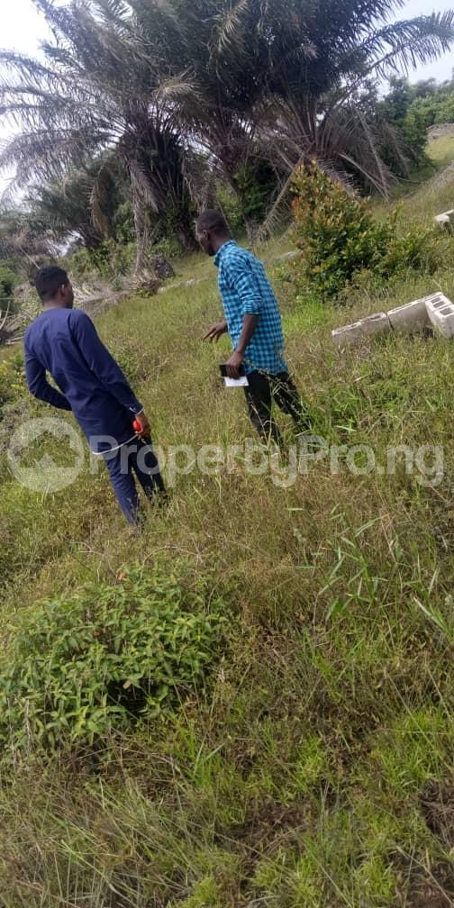 Mixed   Use Land Land for sale Itamarun Town Free Trade Zone Ibeju-Lekki Lagos - 2