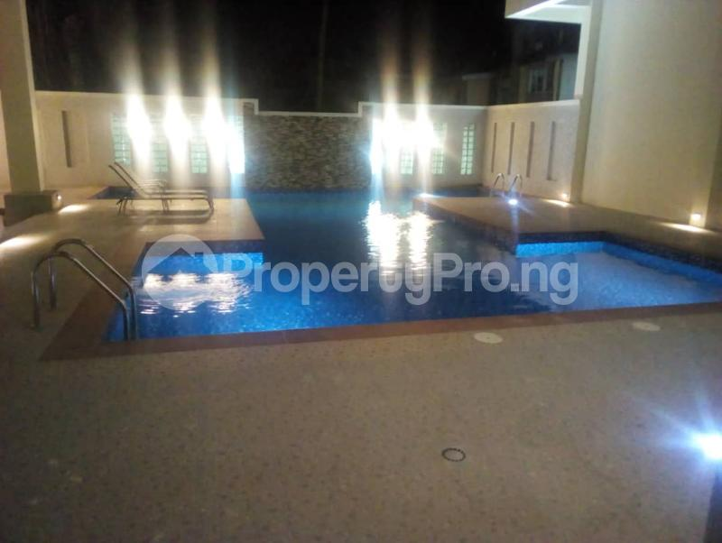 5 bedroom Penthouse Flat / Apartment for rent Off Alexander  Old Ikoyi Ikoyi Lagos - 23