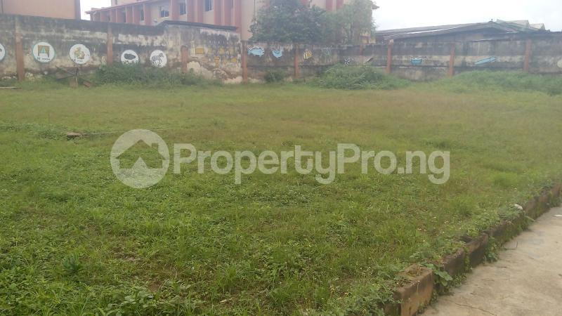 Mixed   Use Land for sale Opeyemi Area Gbagi New Ife Road Iwo Rd Ibadan Oyo - 2