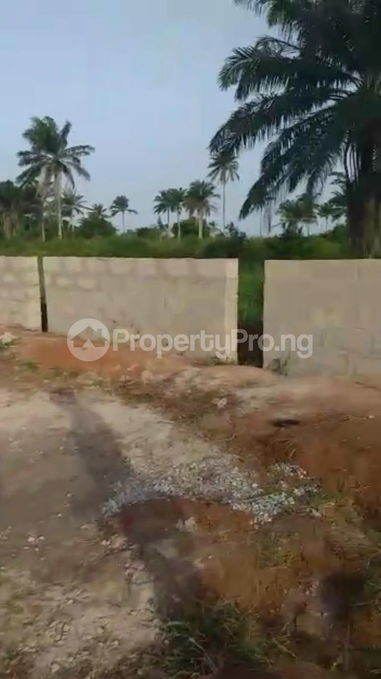 Residential Land Land for sale Ota Ota-Idiroko road/Tomori Ado Odo/Ota Ogun - 10