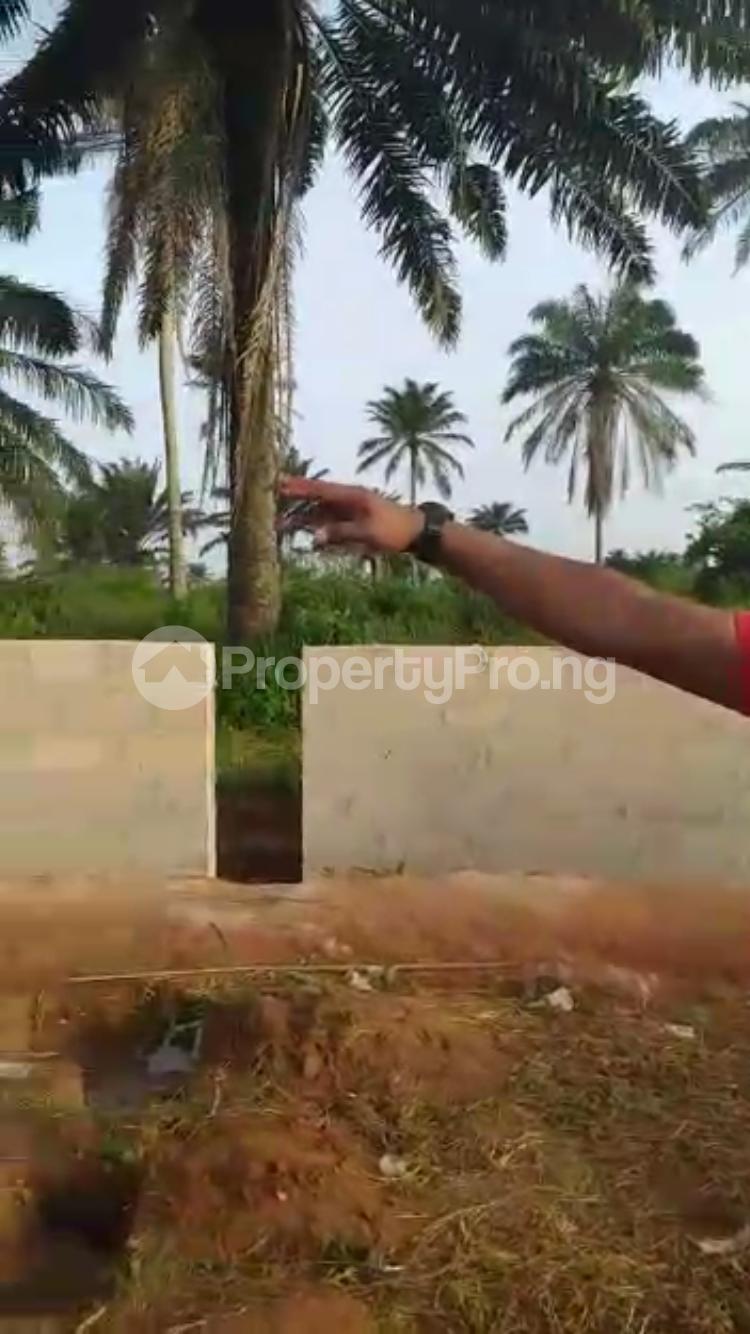 Residential Land Land for sale Ota Ota-Idiroko road/Tomori Ado Odo/Ota Ogun - 3