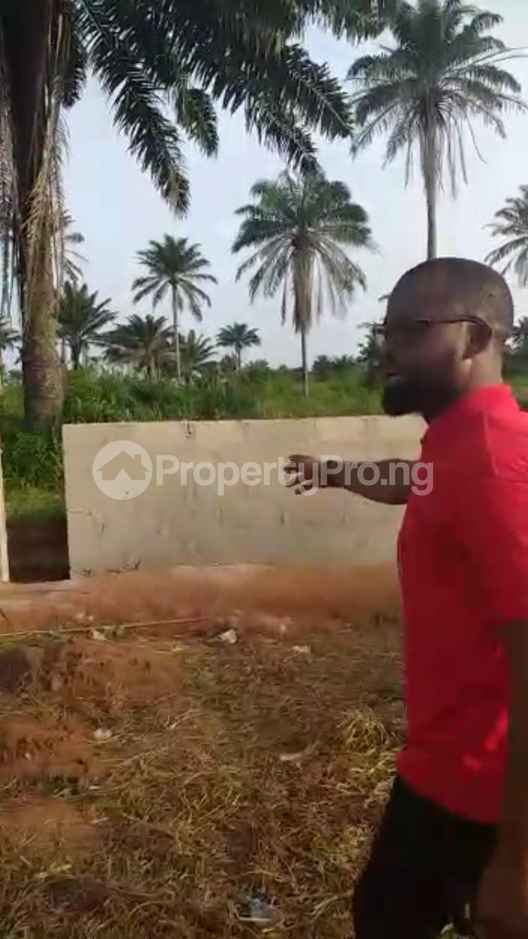 Residential Land Land for sale Ota Ota-Idiroko road/Tomori Ado Odo/Ota Ogun - 2
