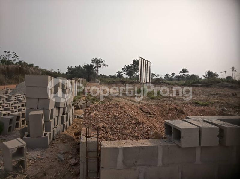 Residential Land Land for sale Igbonla Epe-Lagos Epe Road Epe Lagos - 3