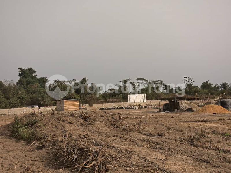 Residential Land Land for sale Igbonla Epe-Lagos Epe Road Epe Lagos - 2