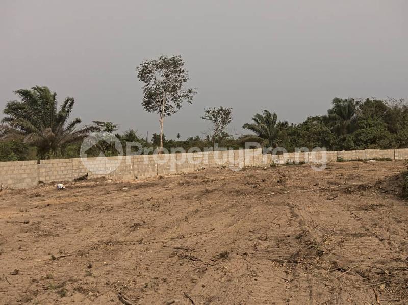 Residential Land Land for sale Igbonla Epe-Lagos Epe Road Epe Lagos - 1