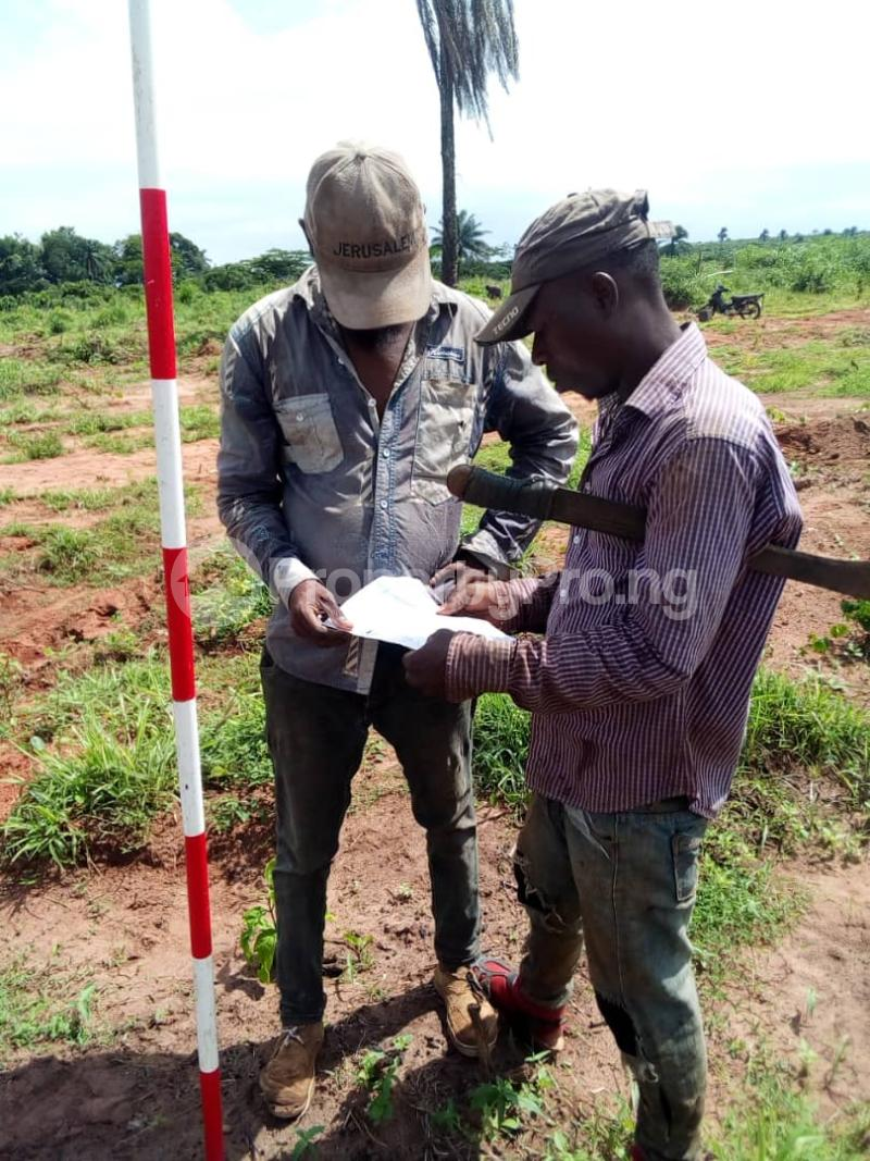 Mixed   Use Land Land for sale Adjacent to Centrnary City Lifestyle Independence Layout Phase 2  Nkanu Enugu - 0