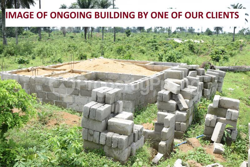 Land for sale Along Eneka-Igwuruta Road, Army Range Eneka Port Harcourt Rivers - 6