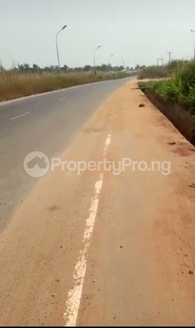Mixed   Use Land for sale Behind Odmegwu Ojukwu University Igbariam Awka North Anambra - 4