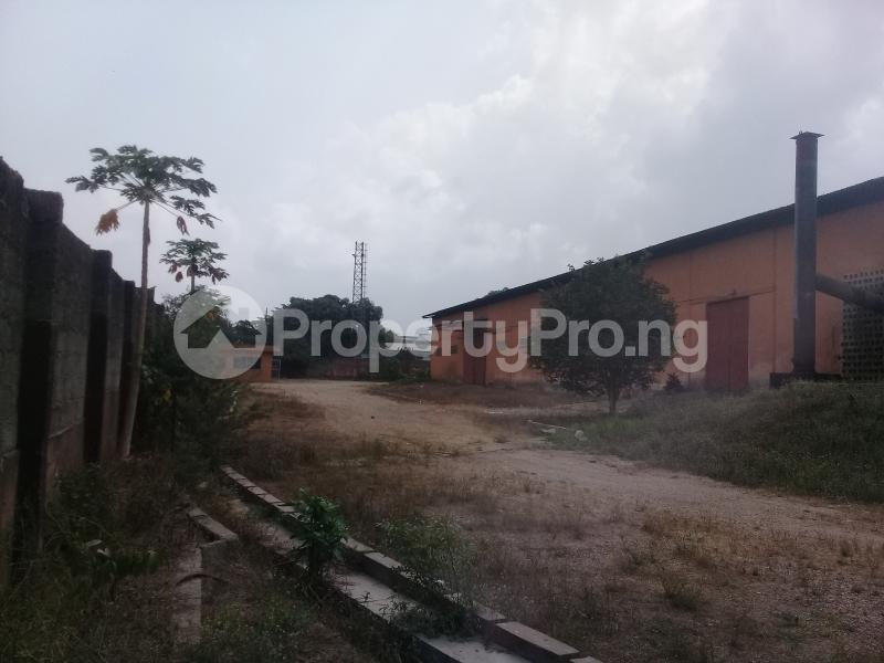 Warehouse Commercial Property for rent Ogun State Housing Estate before Winner Church Ota  Obasanjo Farm Ado Odo/Ota Ogun - 5