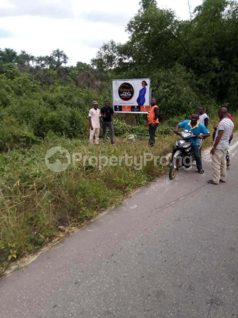 Residential Land Land for sale Christal villa Marian's Manor   Akpabuyo Cross River - 3