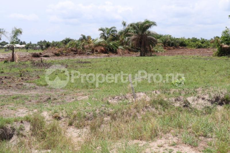 Mixed   Use Land Land for sale .. Mgbakwu town, Awka Territory Awka South Anambra - 3