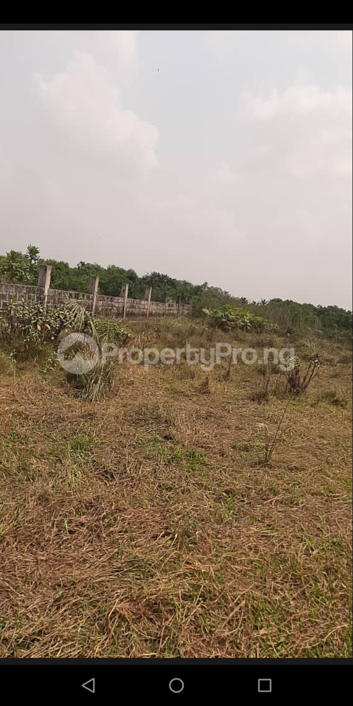 Serviced Residential Land Land for sale Inogi along Owode Apa road, 10 minutes drive from proposed seaport, Nigerian navy Badagry Badagry Lagos - 1