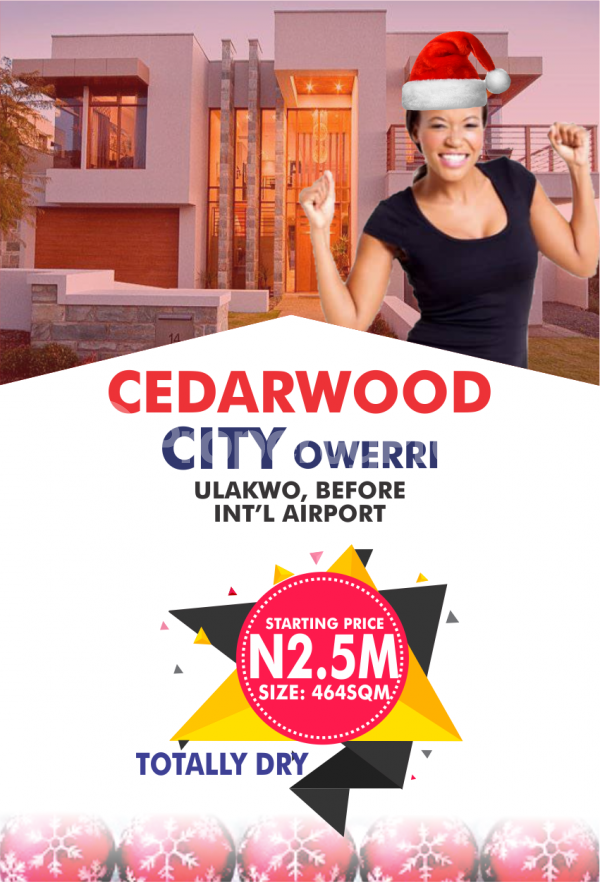 Mixed   Use Land Land for sale 5 minutes drive Before Sam Mbakwe International Airport. Owerri Imo - 1