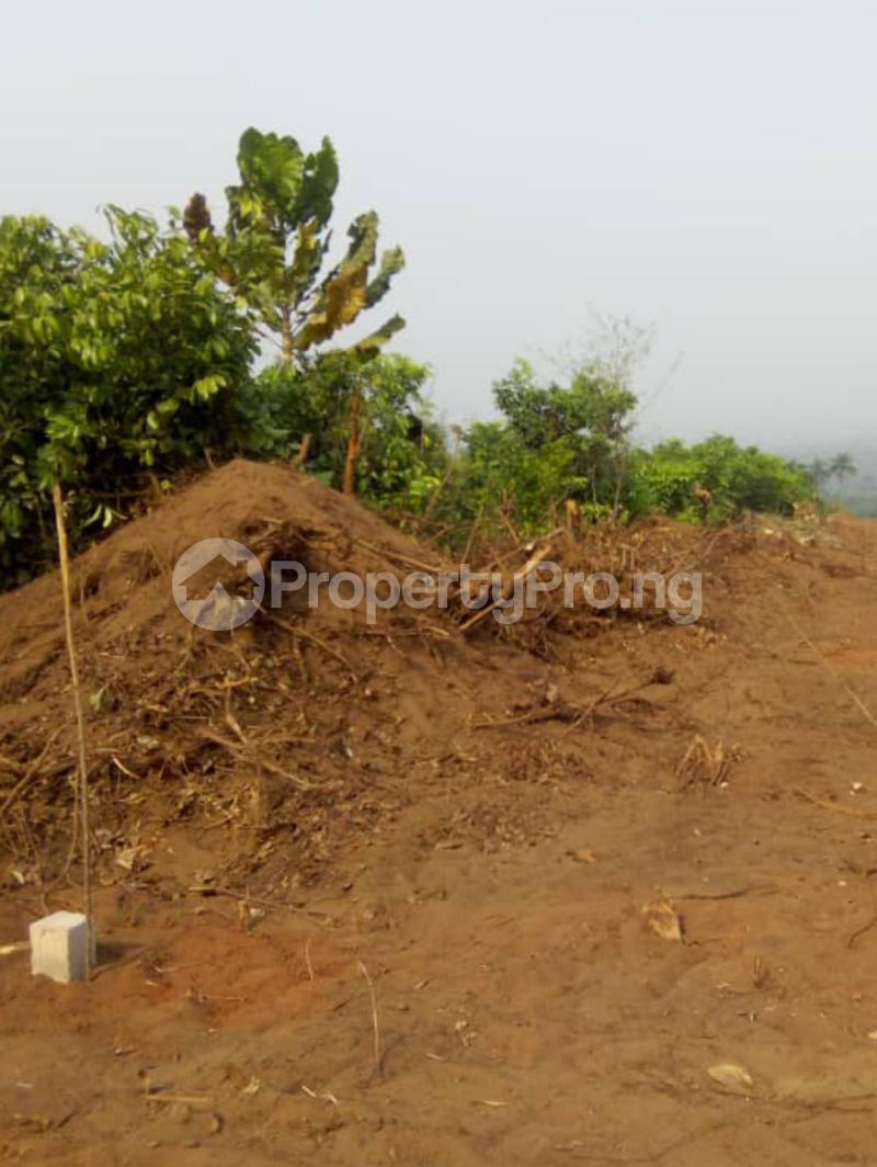 Mixed   Use Land Land for sale Kings Villa Estate Ibusa Asaba Asaba Delta - 3