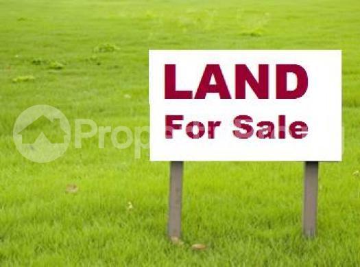 Commercial Land Land for sale Along Igun street at the of Ecobank Oredo Edo - 0