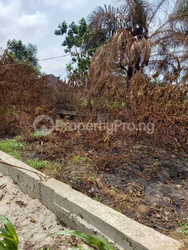 Commercial Land Land for rent Close to express Ikota Lekki Lagos - 2