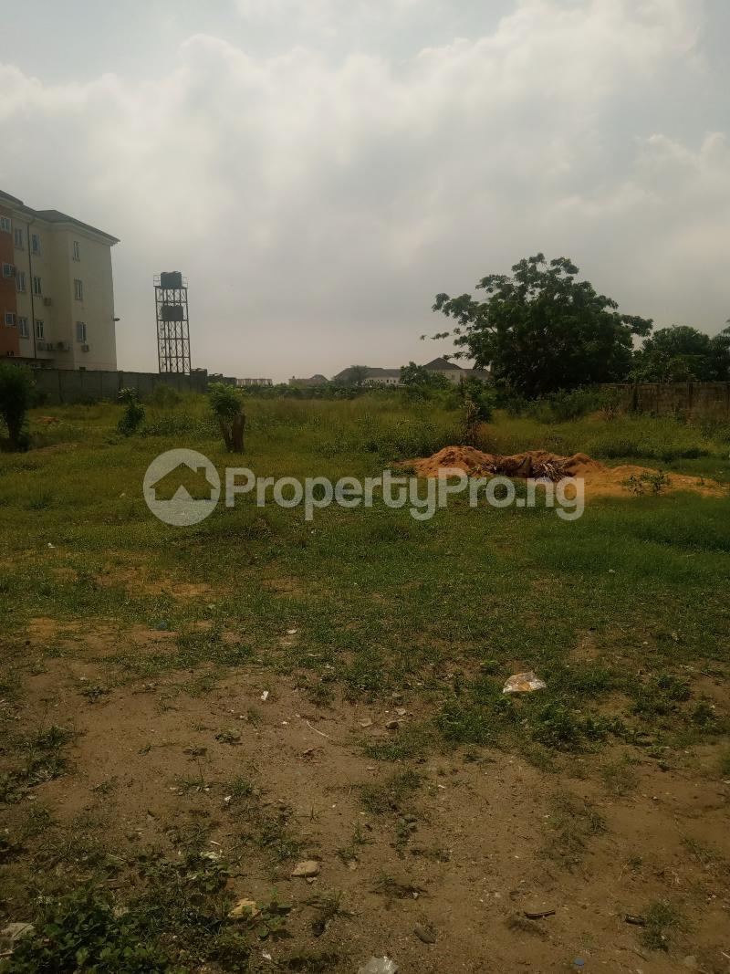 Commercial Land Land for rent Lagos bussines school ajah  Off Lekki-Epe Expressway Ajah Lagos - 0