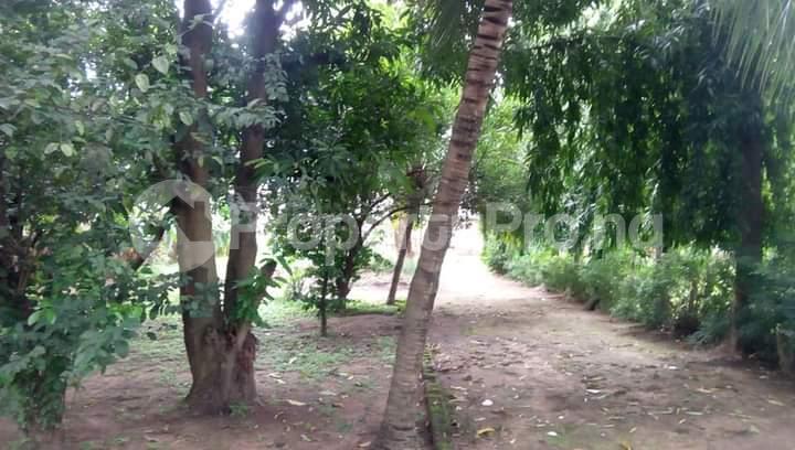 Commercial Land for sale Opposite Jabi Lake, Jabi Abuja - 1