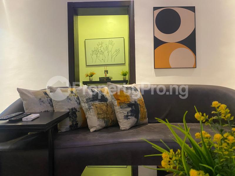 2 bedroom Mini flat Flat / Apartment for shortlet Freedom Way Lekki Phase 1 Lekki Lagos - 13
