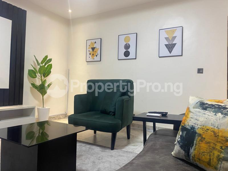 2 bedroom Mini flat Flat / Apartment for shortlet Freedom Way Lekki Phase 1 Lekki Lagos - 17