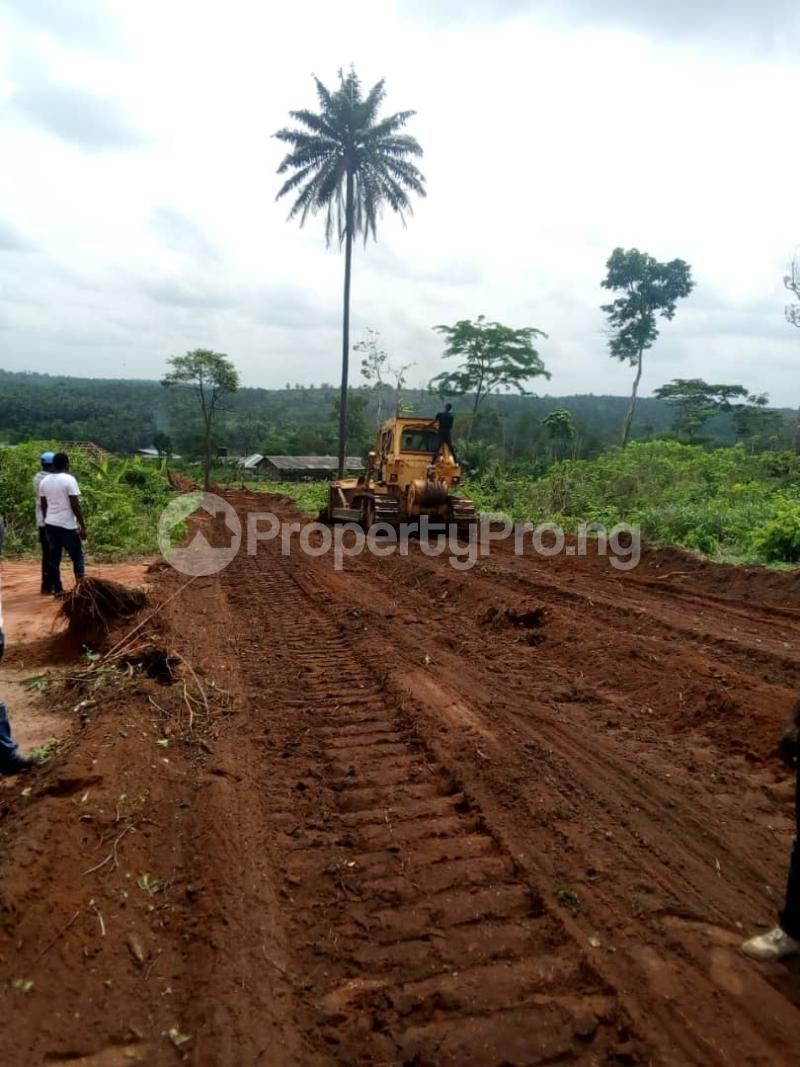Mixed   Use Land Land for sale Uhunmwonde Edo - 2