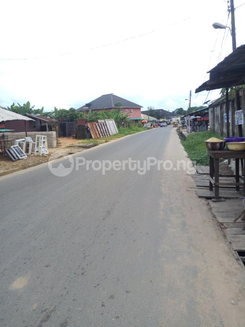 10 bedroom Residential Land Land for sale New Road Ada George Port Harcourt Rivers - 4