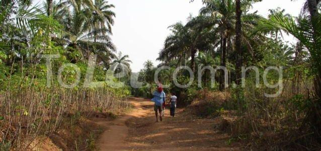Land for sale Iriebe Eleme Rivers - 0
