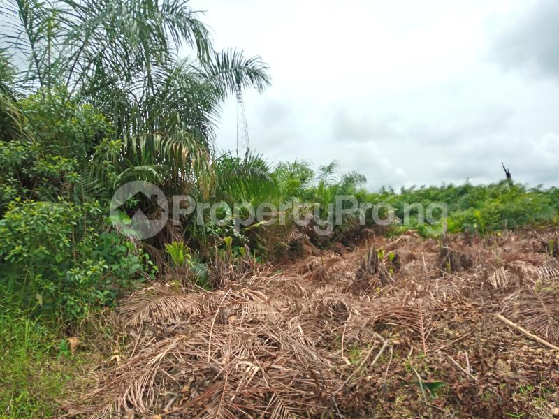 Mixed   Use Land Land for sale Ise town Ibeju-Lekki Lagos - 1