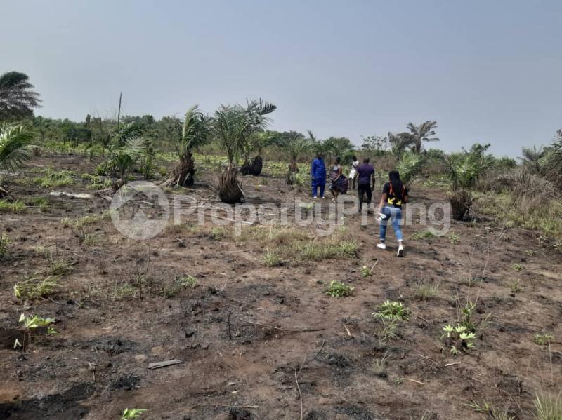 Mixed   Use Land for sale Asegun Village, Ibeju Lekki Local Govt. Area Ibeju-Lekki Lagos - 1