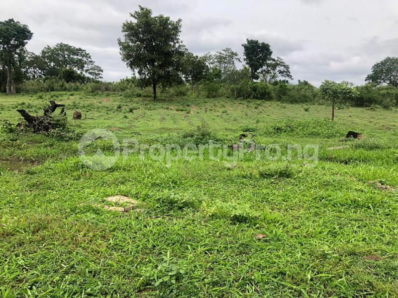 Residential Land Land for sale NIRVANA ESTATE LAND FOR SALE ?? ADJACENT ILORIN INTERNATIONAL AIRPORT  Ilorin Kwara - 2