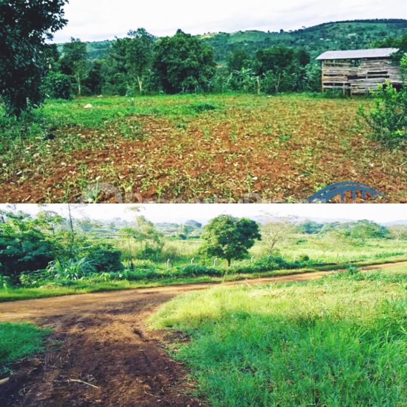 Residential Land Land for sale 5 minutesdrive-in opposite ilorin international Airport Main Gate. Ilorin Kwara - 2
