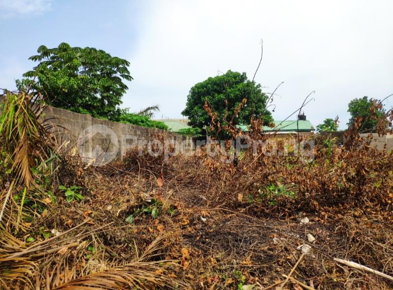 Residential Land for sale Goodnews Estate Sangotedo Ajah Lagos - 0