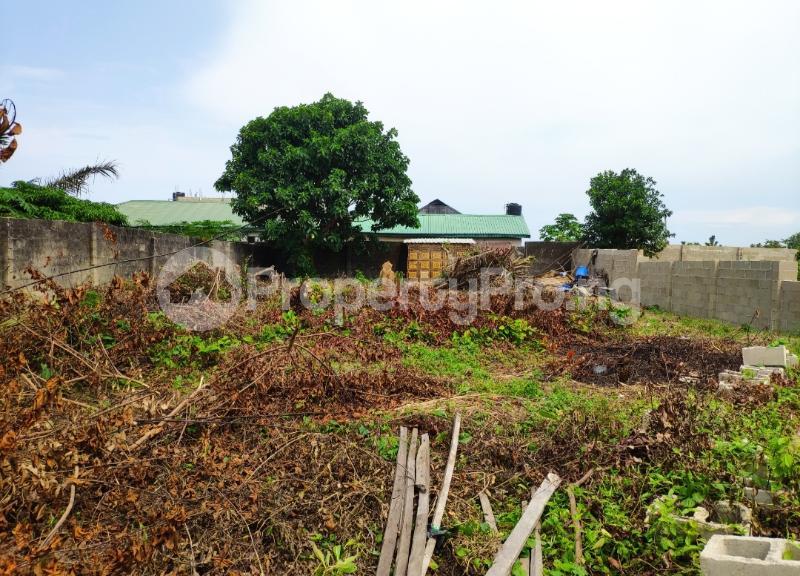 Residential Land for sale Goodnews Estate Sangotedo Ajah Lagos - 1