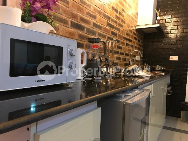 1 bedroom mini flat  Mini flat Flat / Apartment for shortlet T Y Danjuma Street Ligali Ayorinde Victoria Island Lagos - 13