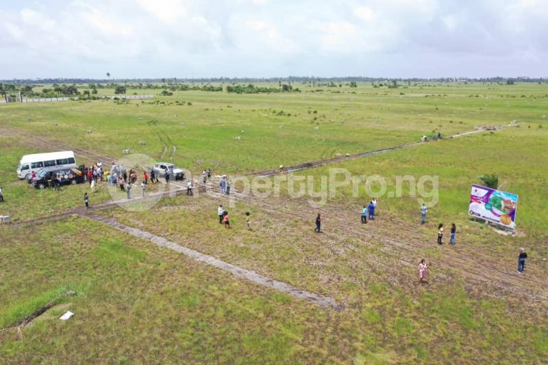 Residential Land Land for sale Opposite La Campagne Tropicana, After Lekki Free Trade Zone LaCampaigne Tropicana Ibeju-Lekki Lagos - 8