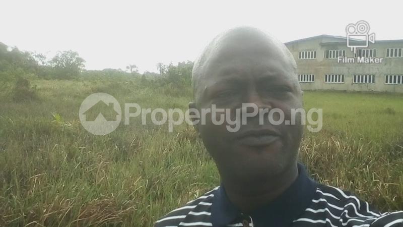 Residential Land Land for sale Peach Palm Estate, Abijo Gra Abijo Ajah Lagos - 0