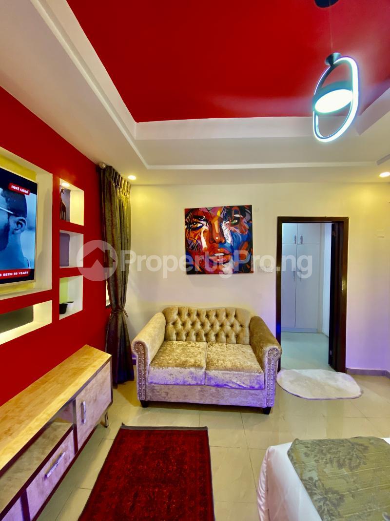 1 bedroom mini flat  Studio Apartment Flat / Apartment for shortlet British Village  Wuse 2 Abuja - 13