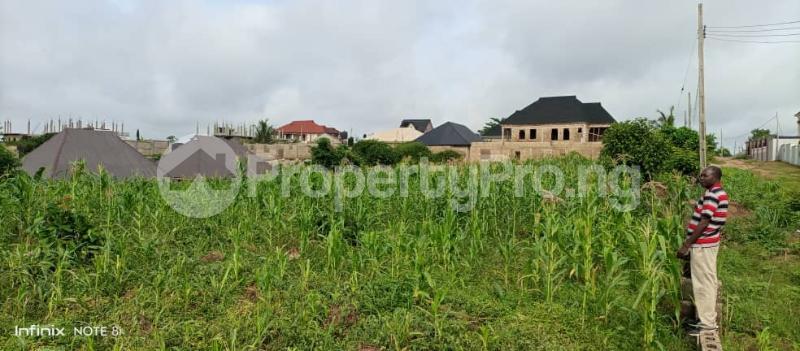 Residential Land for sale Road 13, Av13 Fagun Estate Ondo West Ondo - 2