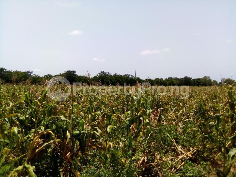 Commercial Land Land for sale AGWUA KUDENDE New EXTENSION Kaduna South Kaduna - 0