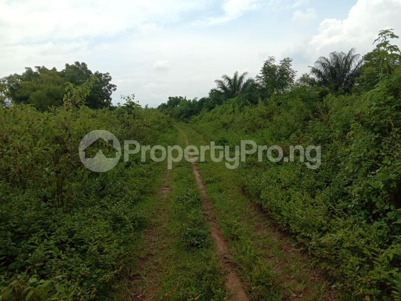 Factory for sale Iyana Ofa, Off Iwo/ibadan Road, Lagelu Local Government. Ibadan Oyo State. Oyedeji Lagelu Oyo - 4