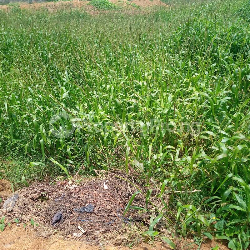 Commercial Land for sale For School( Public Institution) Behind Shoprite Lugbe Lugbe Abuja - 0